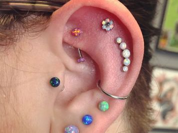 rook and cartilage piercing