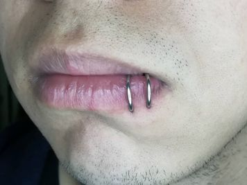 spider bites piercing rings